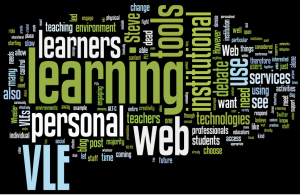 Wordle of blogs posts on the VLE/PLE debate